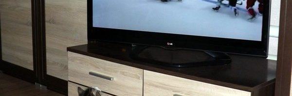 телевизор и зрнеие